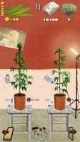 Weed Firm Screenshot - (c) Manitoba Games