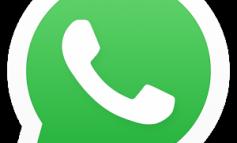 WhatsApp Kniffe, Probleme und Lösungen im Überblick: Profilbild, Kontakte und mehr