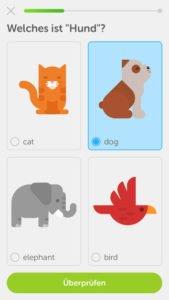 Duolingo Screenshot von der App